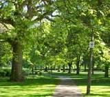 Cateva idei practice pentru amenajarea spatiilor verzi indiferent de dimenziunea acestora.