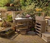 Pentru realizarea in gradina a unui spatiu relaxant pentru familie puteti opta pentru mobilier de gradina in stil rustic alaturi de un foisor sau o pergola.