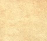 gresie-hol-icon